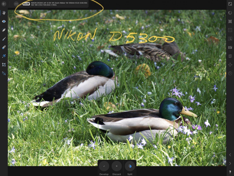9D94DFBC-EB41-48FA-8729-25E7A0D8CE3D.jpeg