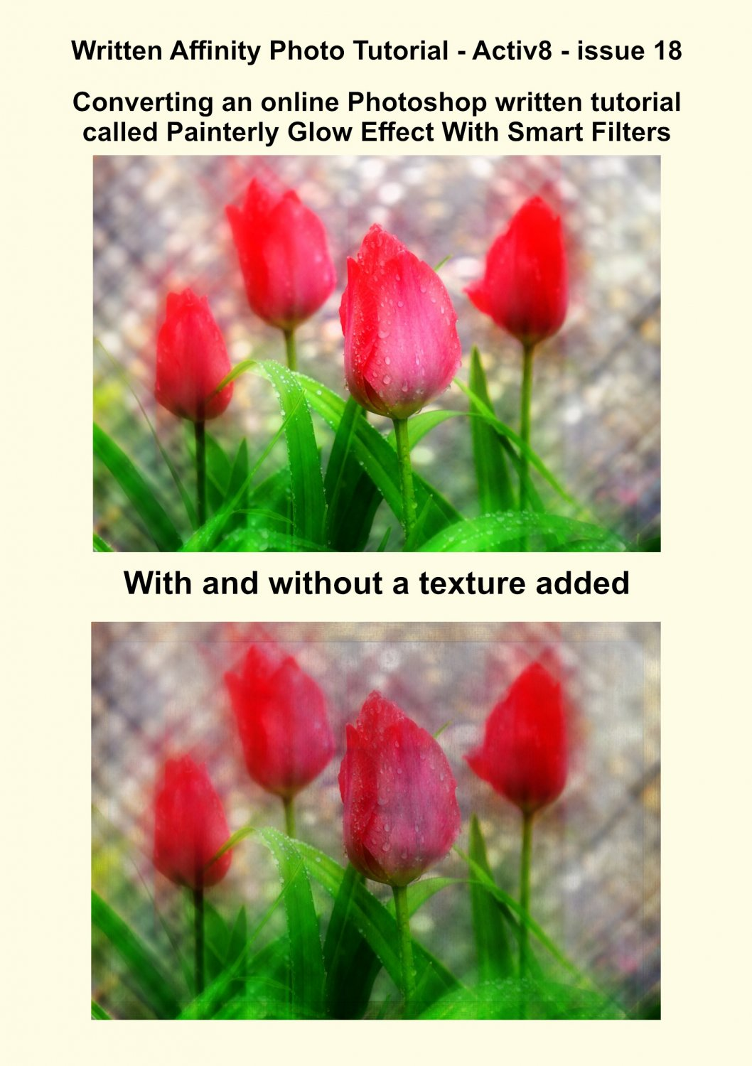tulip-advert.jpg