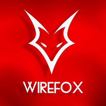 Wirefox Digital Agency Birmingham.jpg
