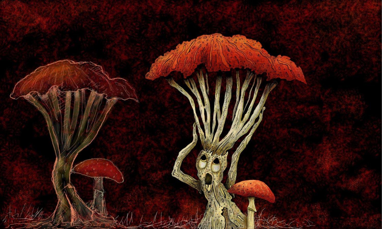 Mushroom@0.5x.jpg