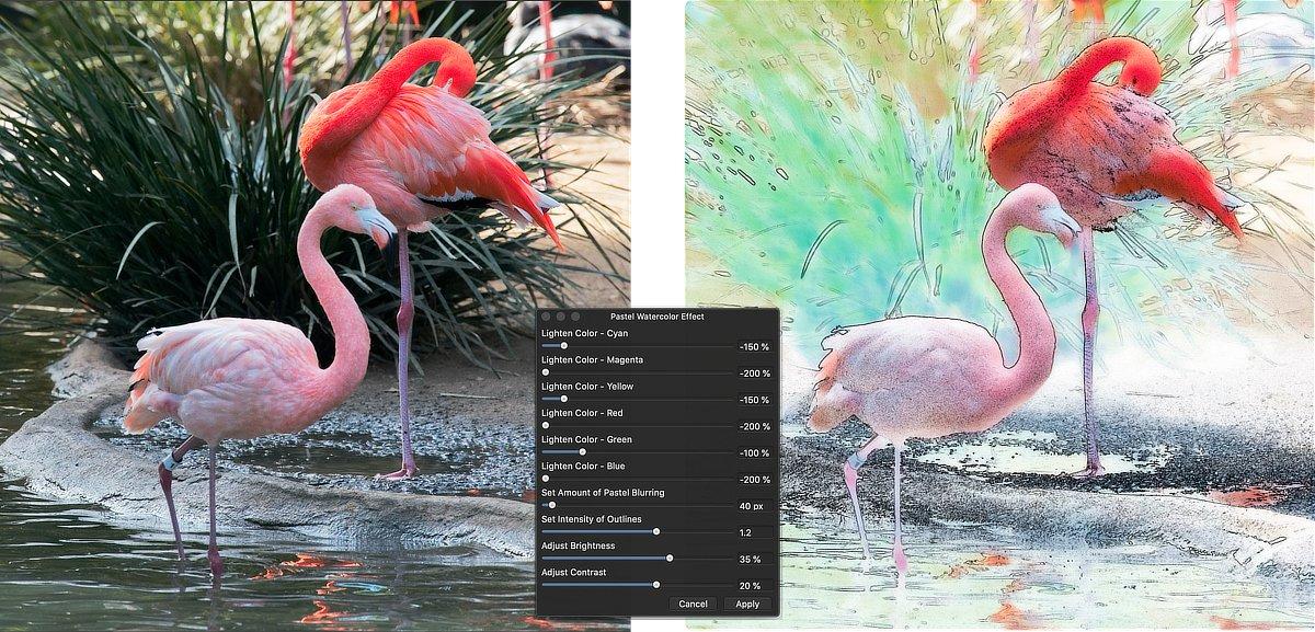 447208285_FlamingosWatercolor.jpg.70f6c0a037c6e9ef8d0fec448d4ce5bc.jpg