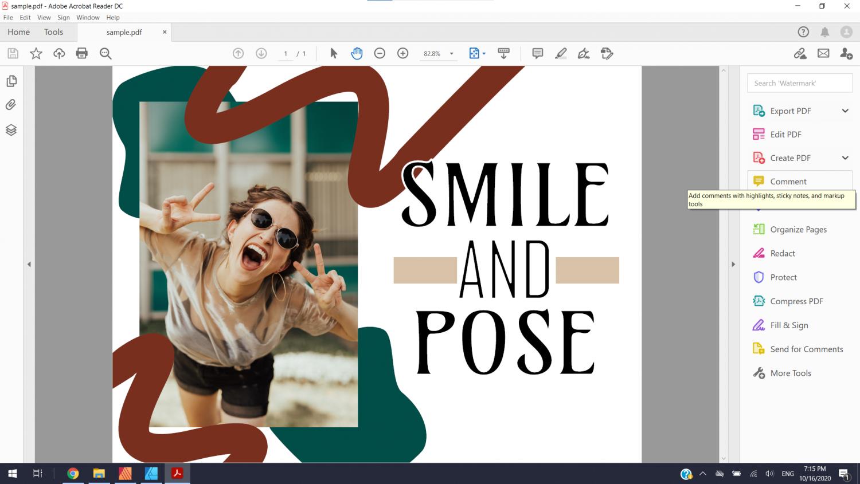 Sample PDF.png
