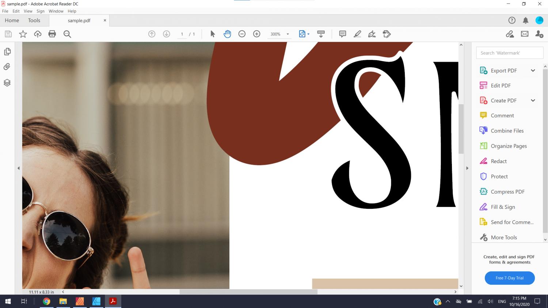 Sample PDF Zoom.png