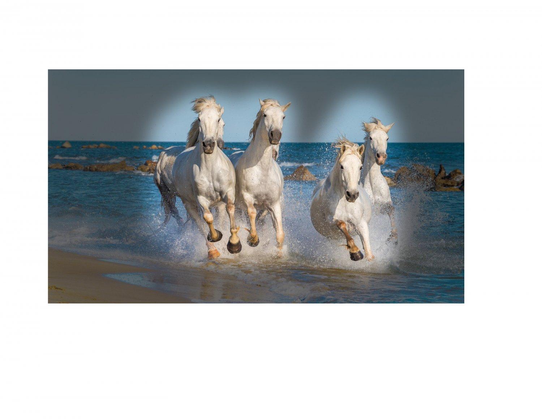419654999_horseswithvignette.thumb.jpg.dfa28015bb05fced4b592da3e5323ce7.jpg