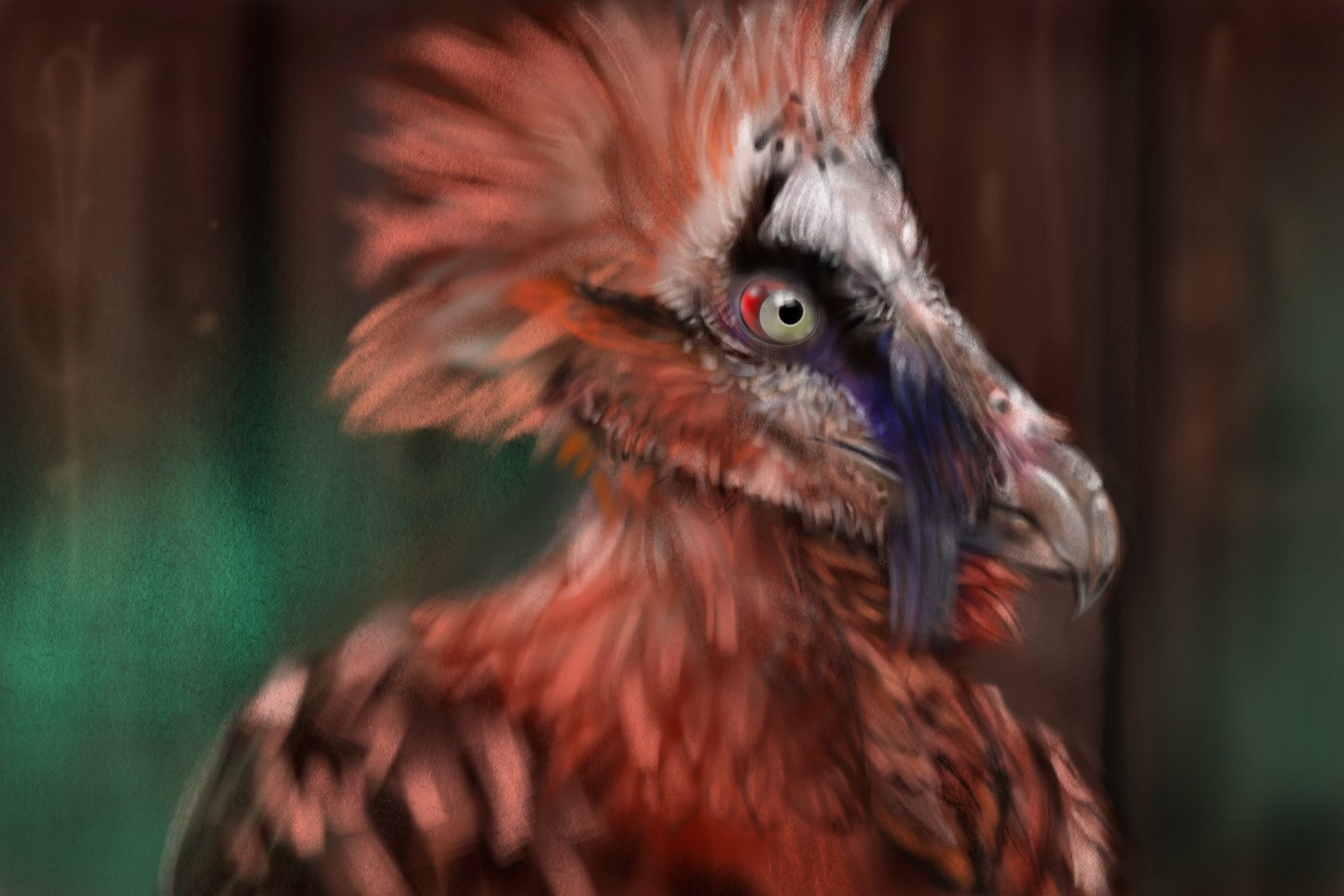 Frame five Bone- Eating Bearded Vulture.jpg