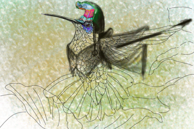 hummingbird with hat slice1.jpg