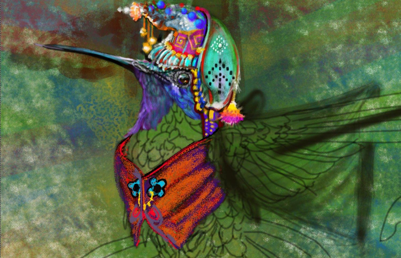 close_up_of_Shaman_Hummingbird.jpg